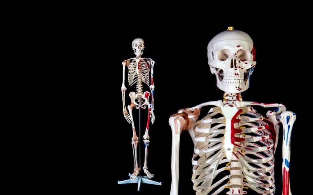 Анатомия недоимок